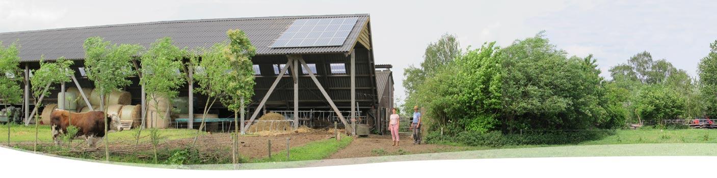 zonnepanelen-BD-Boerderij Ruimzicht