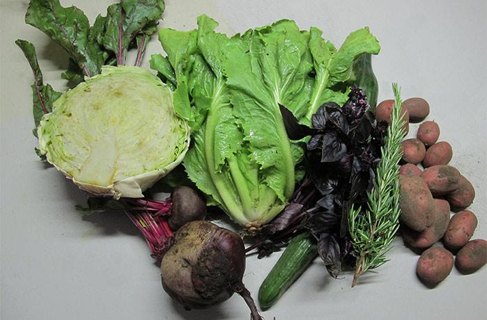 Groentenpakket augustusTuinderij Ruimzicht