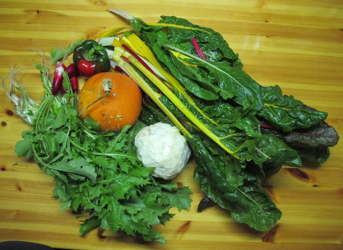 groentepakket-oktober-Tuinderij Ruimzicht