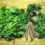 groentepakket Tuinderij Ruimzicht
