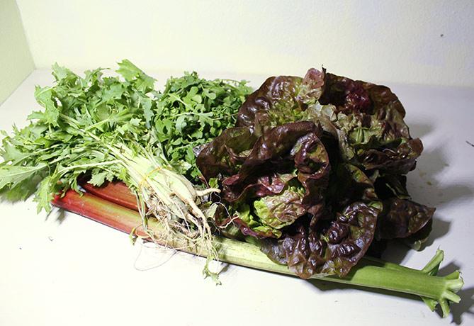 Groentepakket mei 2017-Tuinderij Ruimzicht